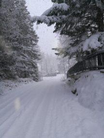 VinterRea